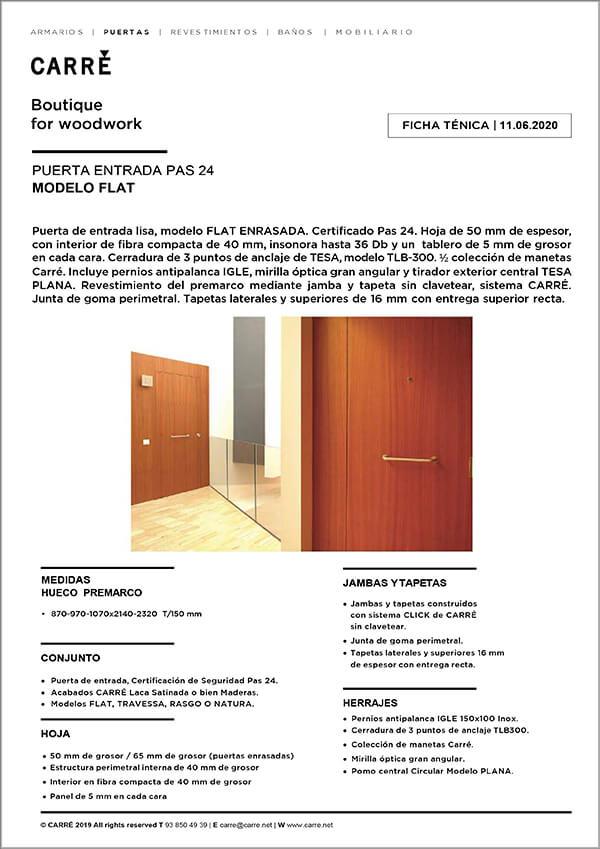 Ficha técnica puerta de entrada